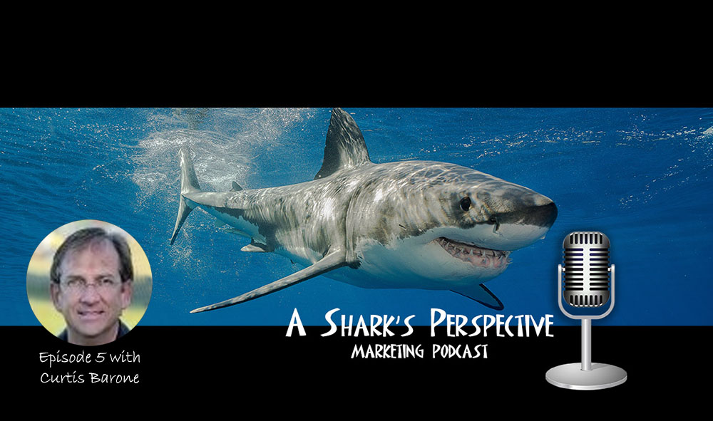 a_sharks_perspective_episode_5_curtis_barone.jpg