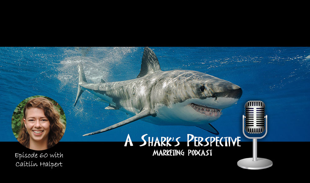 a_sharks_perspective_episode_60_caitlin_halpert.jpg