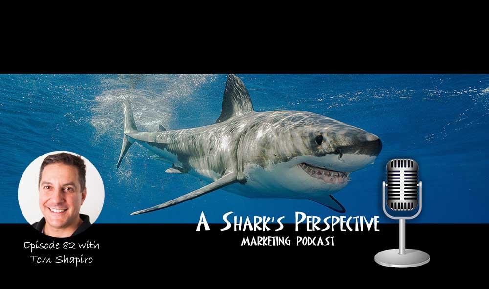 a_sharks_perspective_episode_82_tom_shapiro.jpg