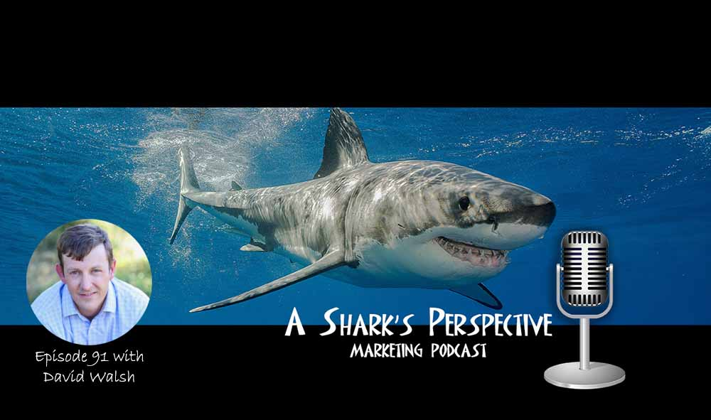 a_sharks_perspective_episode_91_david_walsh.jpg