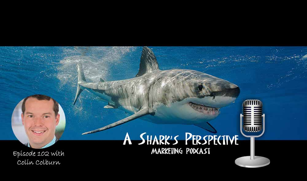 a_sharks_perspective_episode_102_collin_colburn.jpg