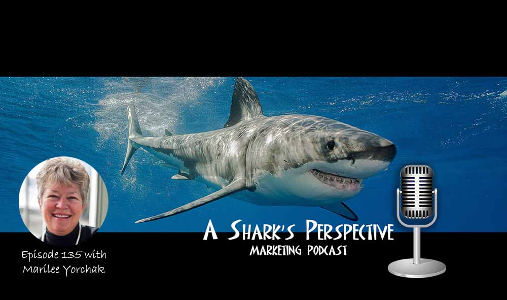 a_sharks_perspective_episode_135_marilee_yorchak.jpg