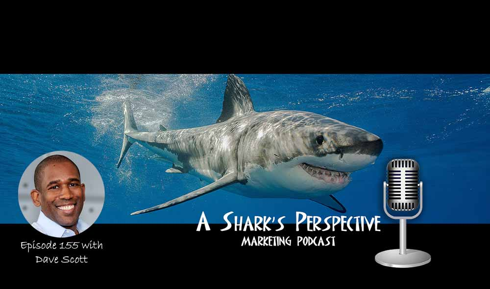 a_sharks_perspective_episode_155_dave_scott.jpg