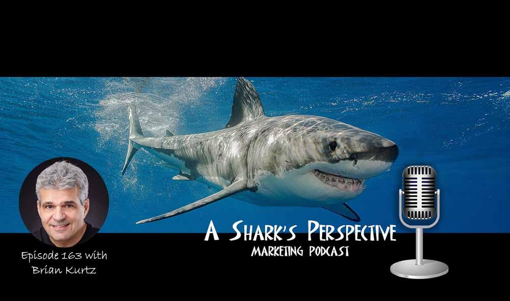 a_sharks_perspective_episode_163_brian_kurtz.jpg