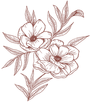 Canopy_flower-burgundy300.png