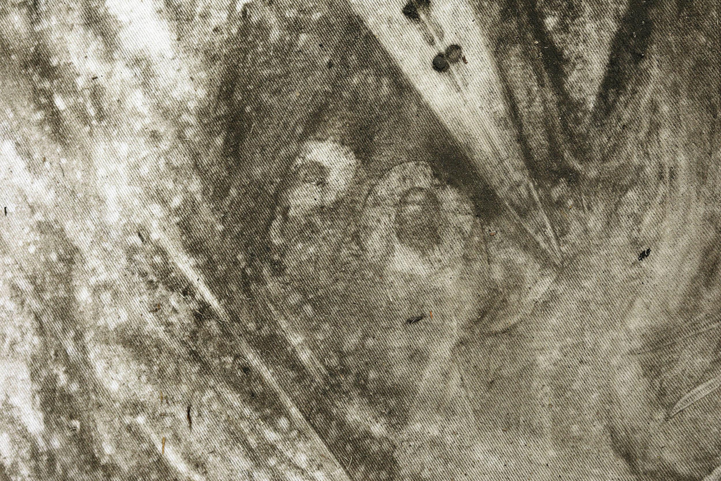 Life Shroud (Apantles) detail