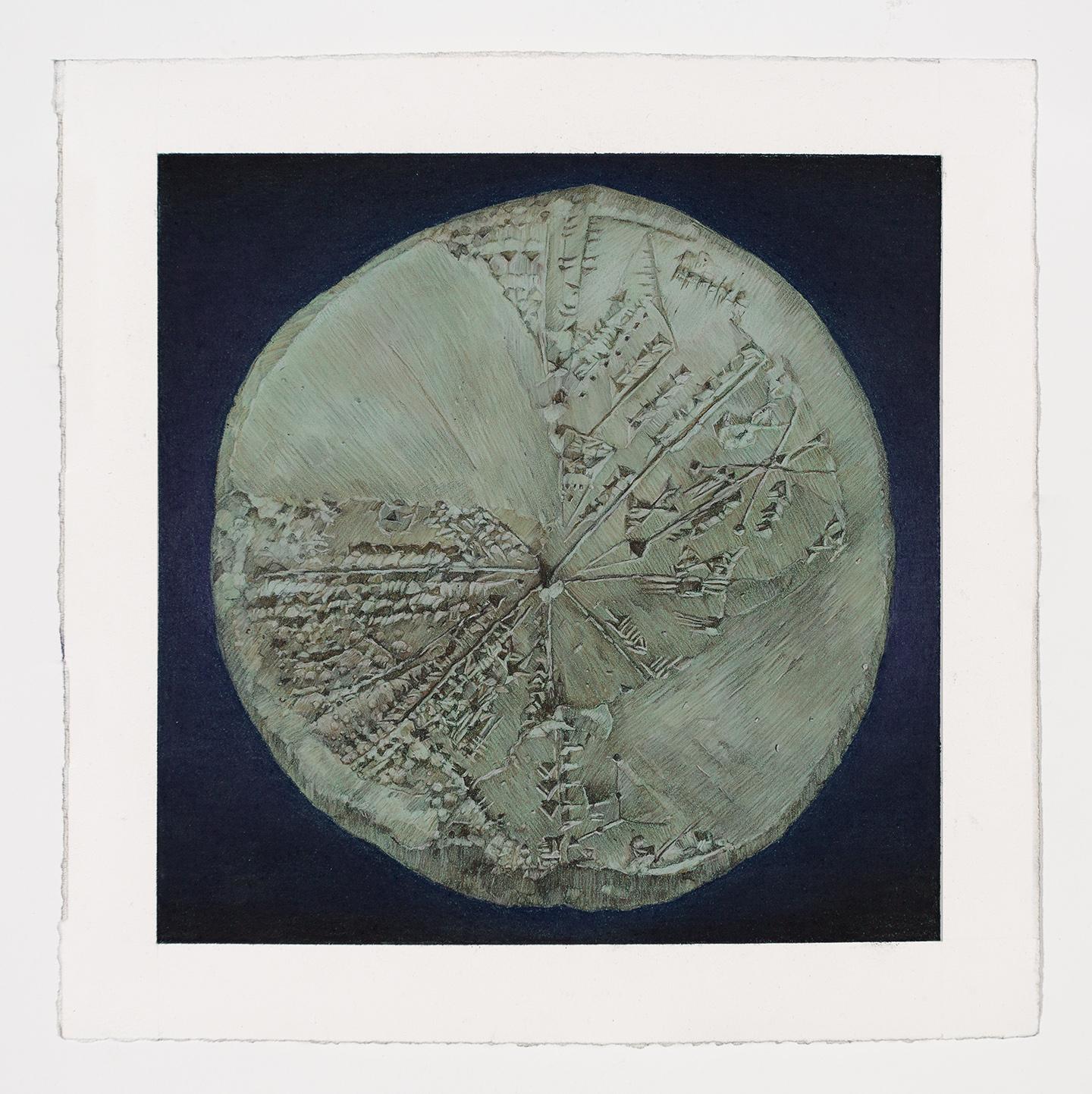 """15.  Ancient Cuneiform Planisphere    Pastel pencil and gouache on paper. 2016. 10""""x10"""""""