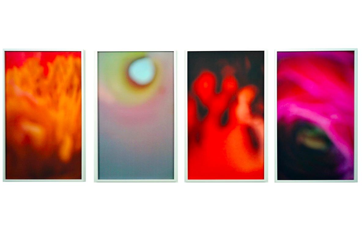 Sans Titre   Sandra Mauro, Photographie, 100 x 250 cm