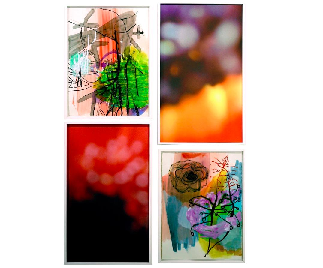 Sans Titre   Christine Heitzler & Sandra Mauro, Techniques mixte acrylique et encre de chine & Photographie, 180 x 130 cm