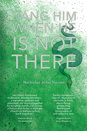 Hang Him When He Is Not There by Nicholas John Turner, Splice