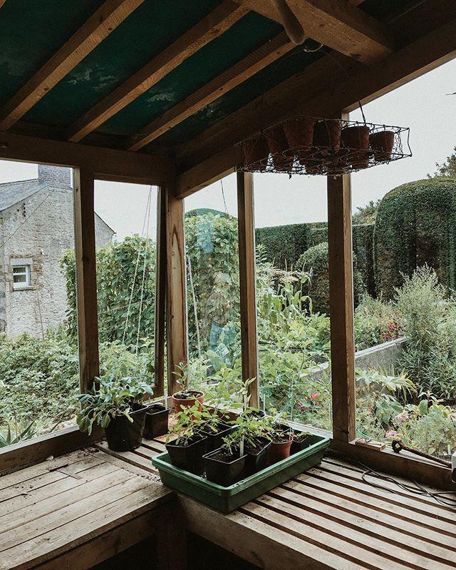 Enjoying every single detail of Trenarth gardens potting shed 🌿💛 . . . #beautifulgardens #trenarthmanor #opengardenday #gardensworld #gardenlife #gardenstyle #cottagegarden #cornwallwildlife #cornwall #photography #gardenphotography #greenmillproject