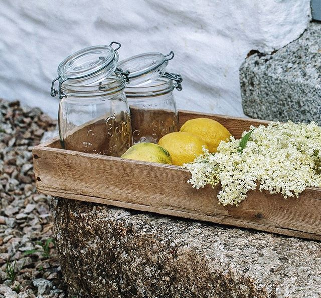 Back in Cornwall and I'm excited to spend a nice and hopefully warm summer here. I've made elderflower cordial to keep in the fridge just in case this happens! 🌞🍹 . . . #elderflowercordial #syrup #drinks #summer #italianlemons #elderflowers #edibles #instafood #countrylife #cornwall #homemade #feedfeed #myseasonaltable #f52grams #lifeandthyme #flordesaüc #foodphotography #photography #greenmillproject