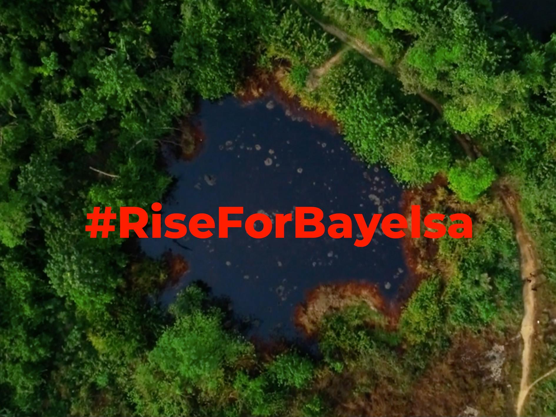 Rise for Bayelsa.jpg