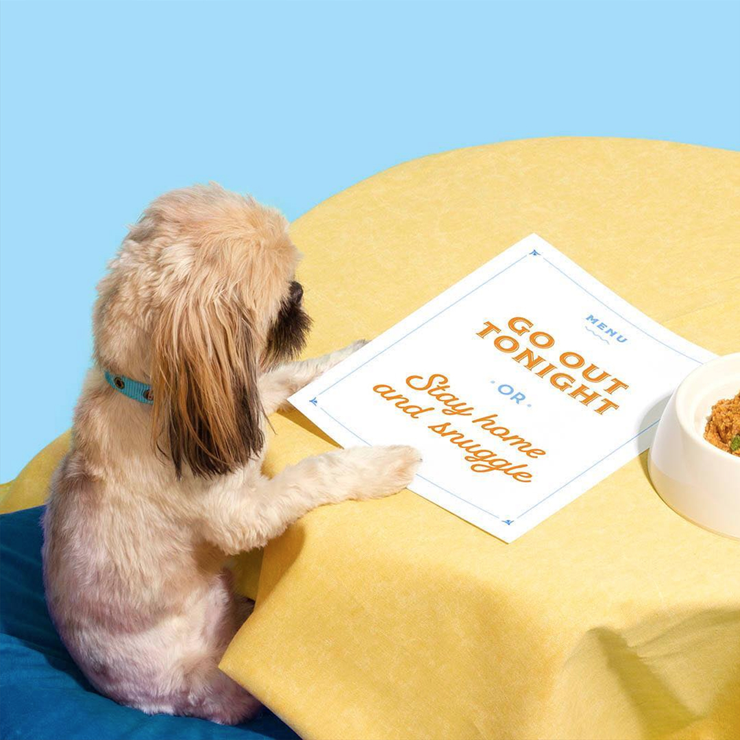 Dog with Menu | Amy Shamblen, creative photographer | Masters of Content Creation,  The Content Designer Blog.