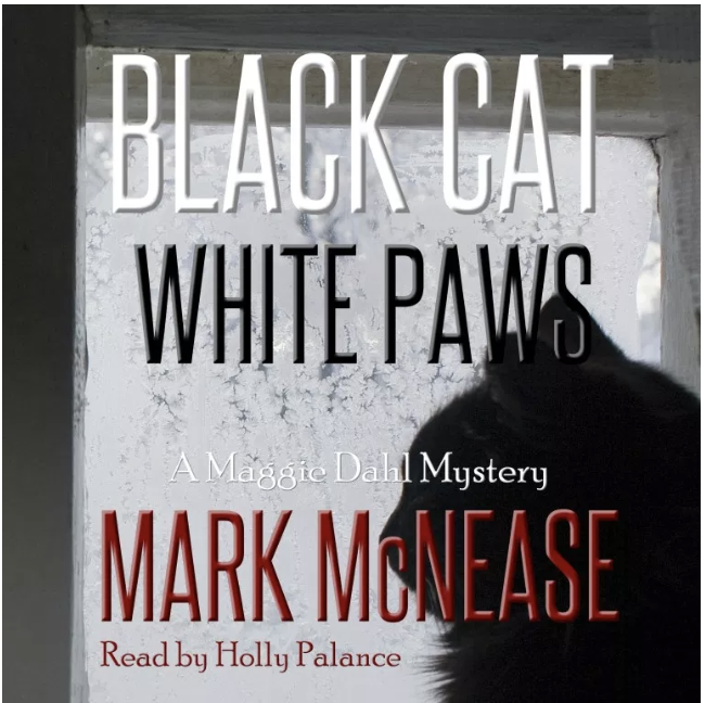 Black Cat White Paws 648 x648.png