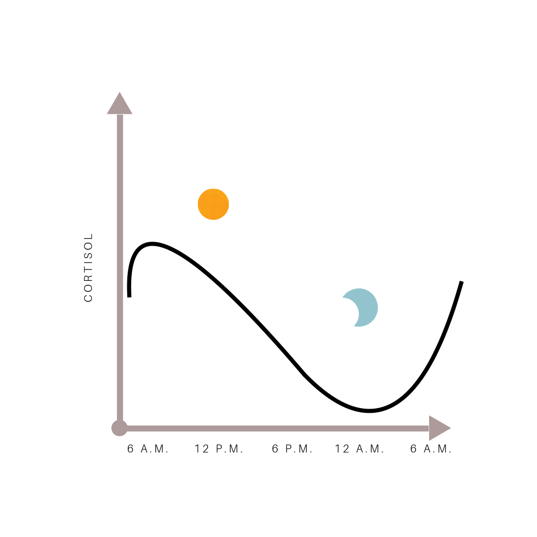 Normal cortisol curve - daily fluctuations in average cortisol levels - stress, sleep, weight gain