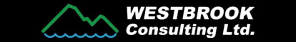 Westbrook Consulting.jpg