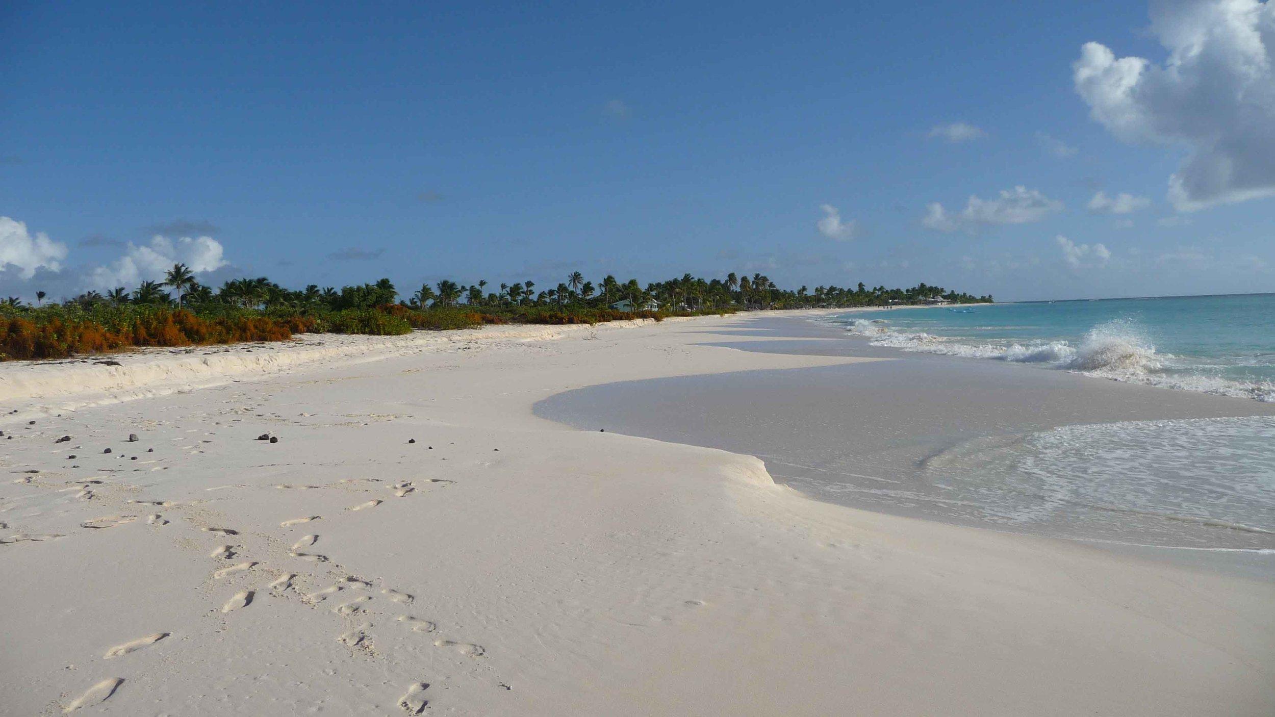 Dream beaches.jpg