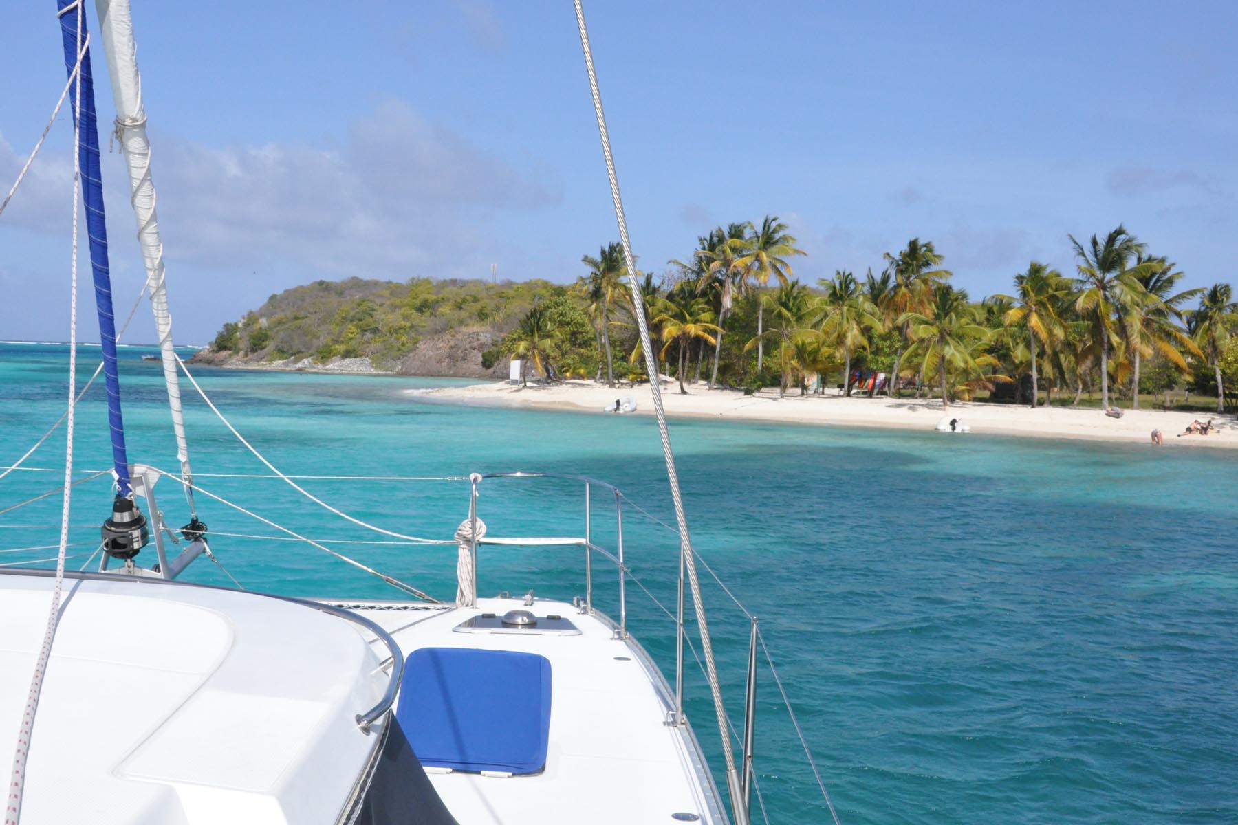 Island Life.jpg