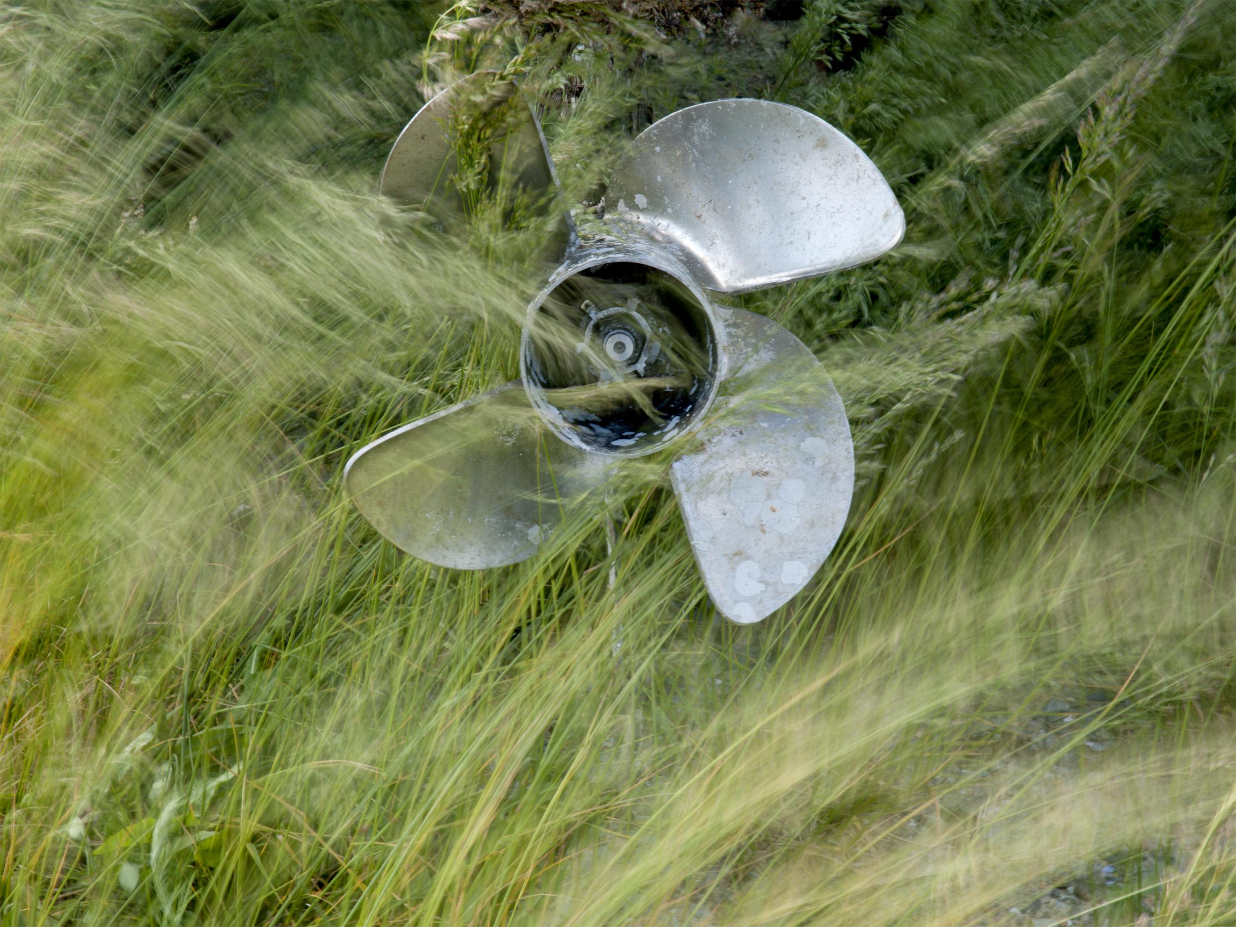Propeller and grass web.jpg