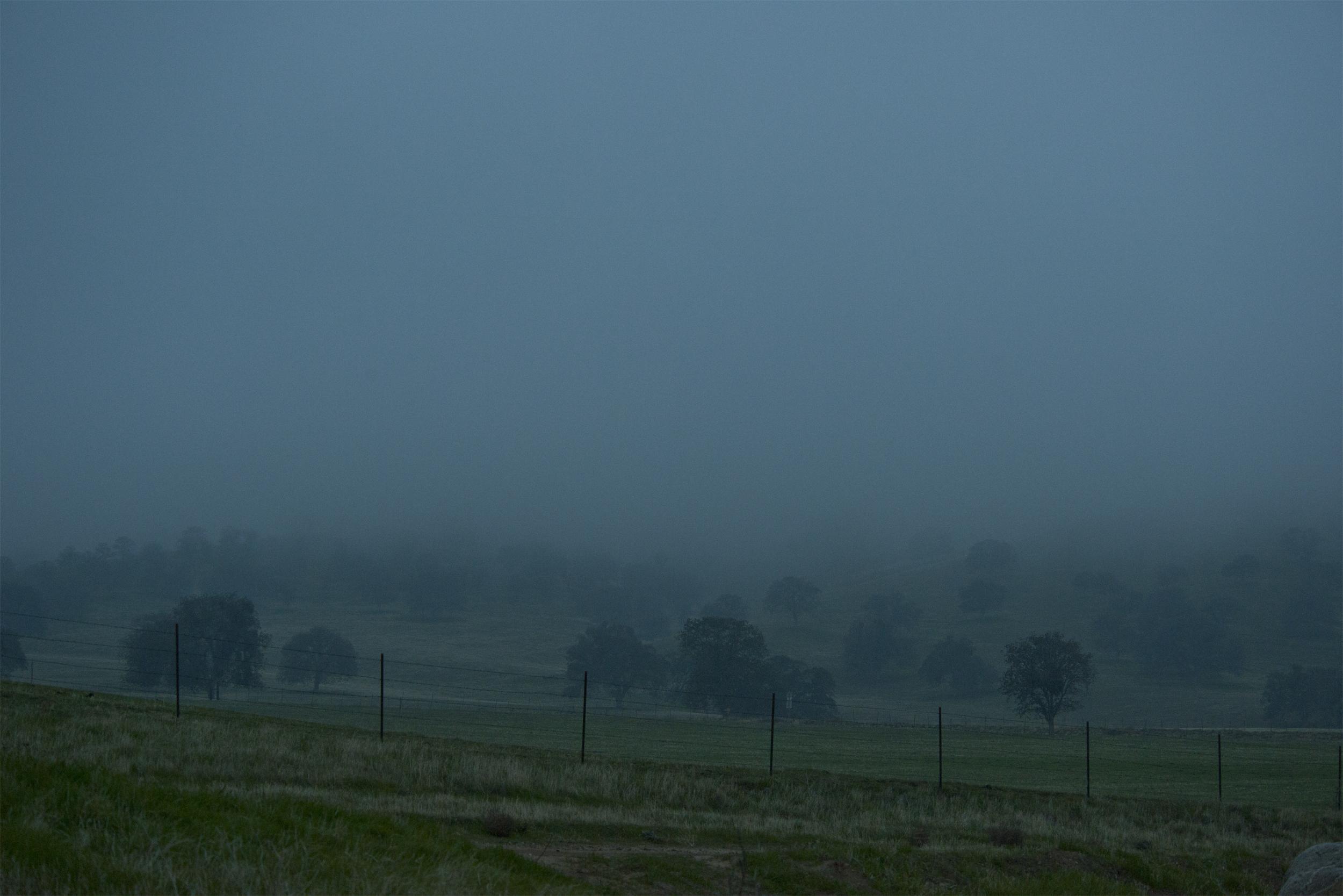Rolling Hills & Fog -