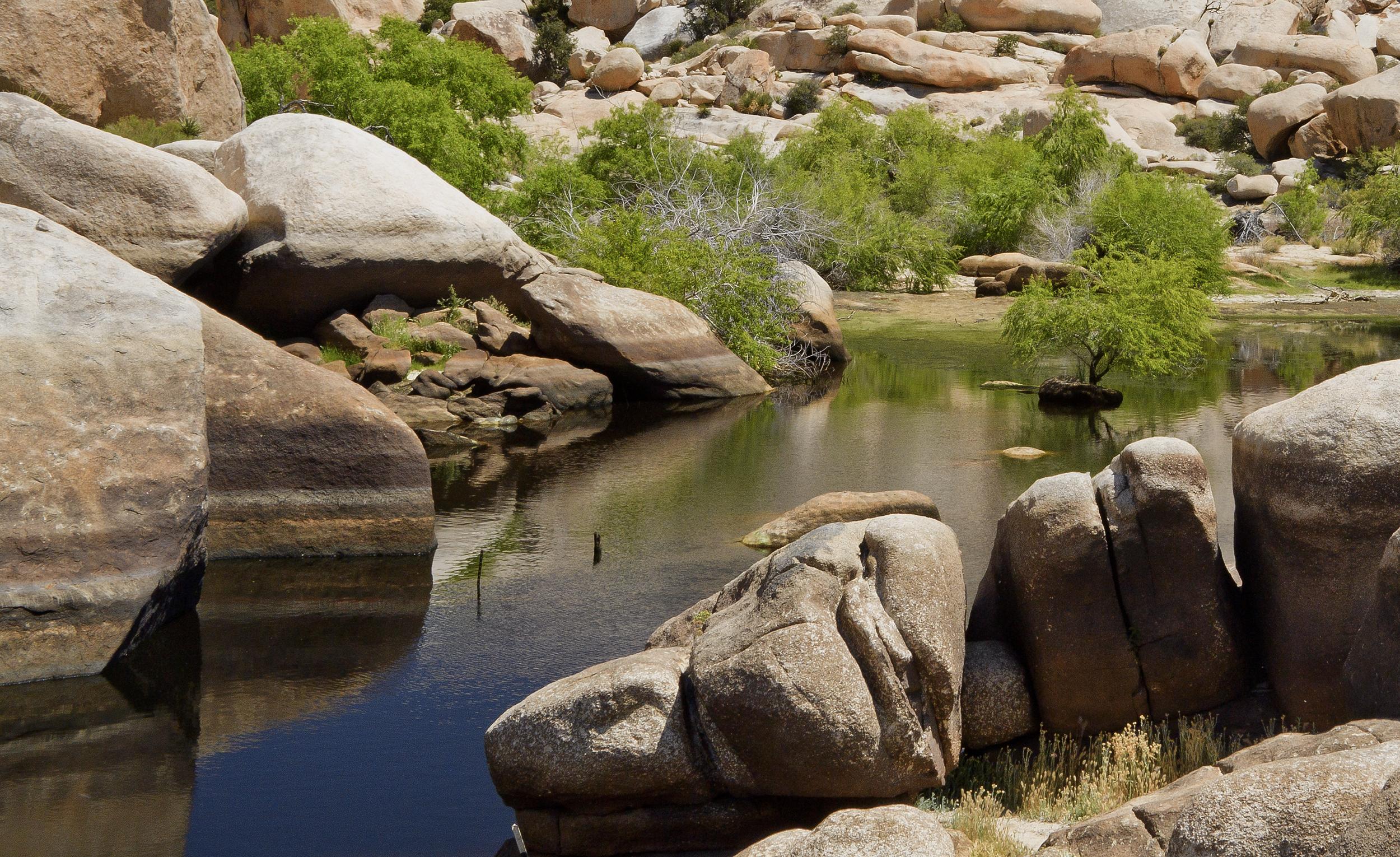 Barker Pond -