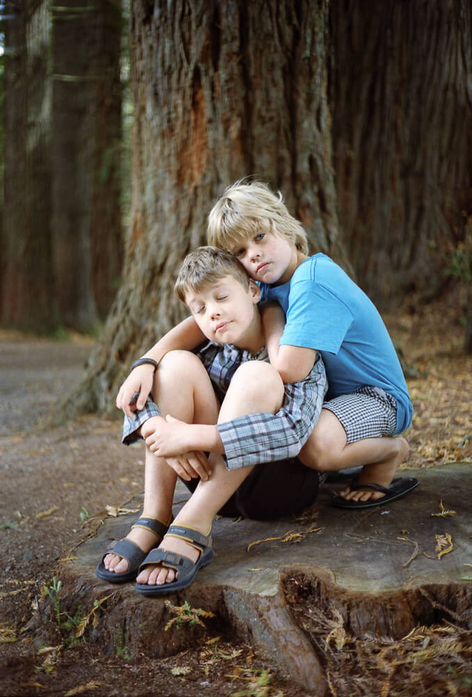 seeing a way back - boys in the redwood forest.jpg