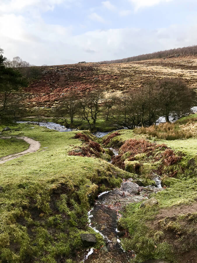 The Reluctant Photographer - Burbage Brook.jpg