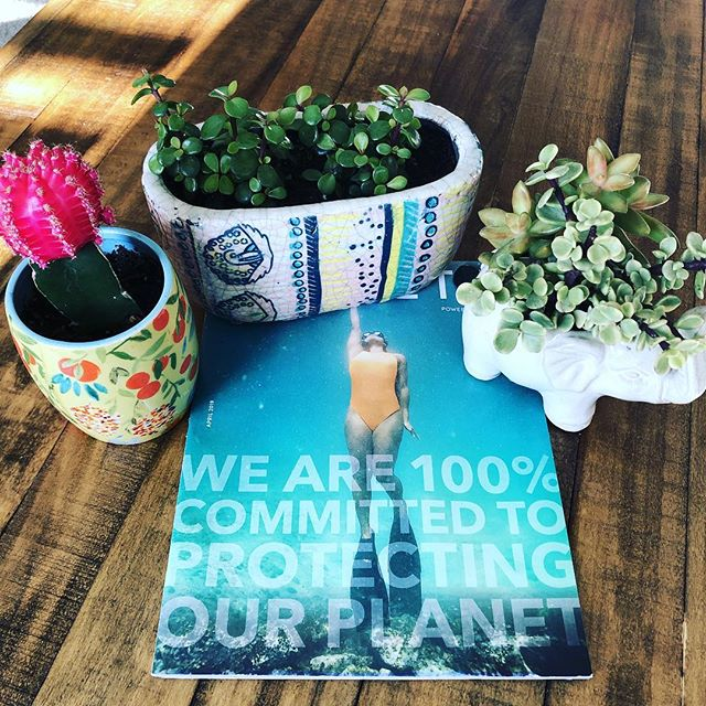 I bet you can guess what brand this magazine is from 🙌🏼 Wouldn't it be amazing if places in your neighborhood took this approach and put their values on their front door?! Yeah, we think so too. Look for the yellow Valyou sticker in the window, coming soon to your neighborhood in San Diego 👍🏼🌻