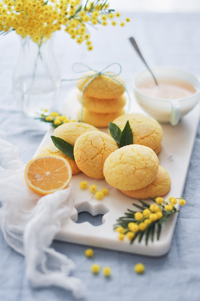 photographe-culinaire-biscuits-citron-sh01.jpg
