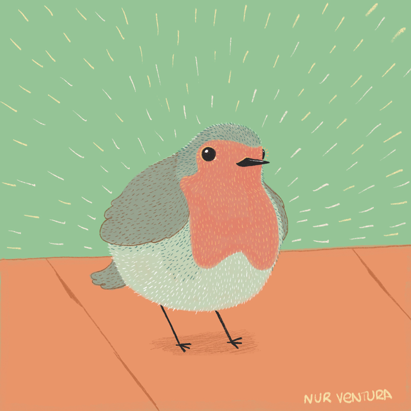 petirrojo_nurventura_illustration.png