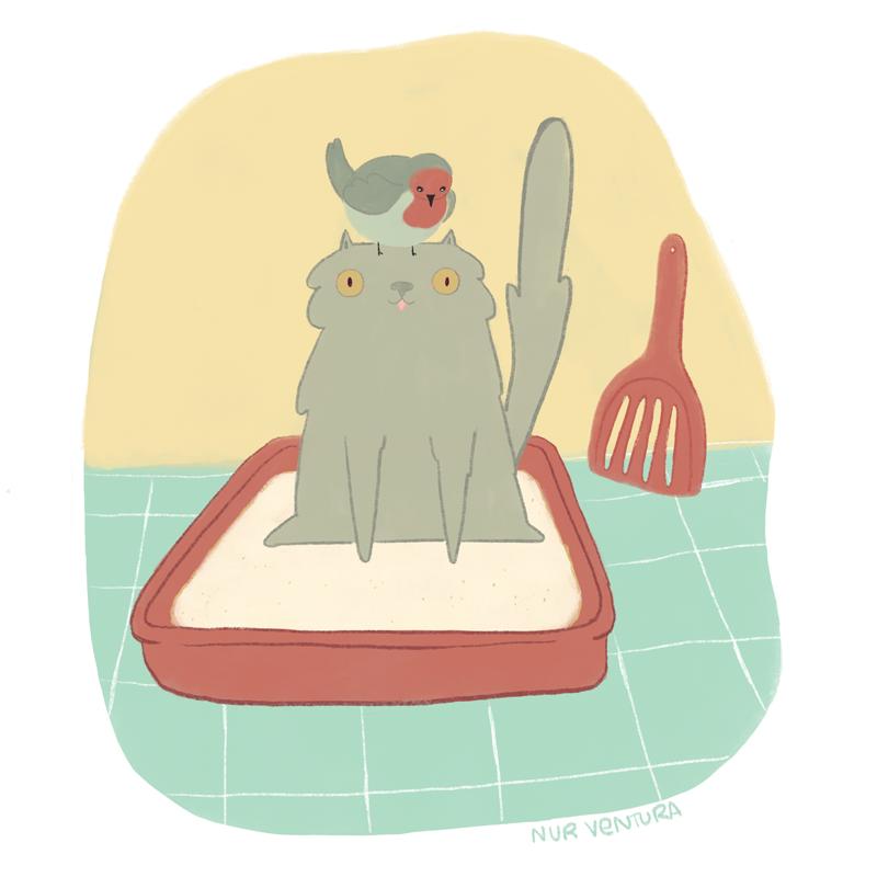 Sabanita_y_Pollo-nurventura-illustration-cat.png