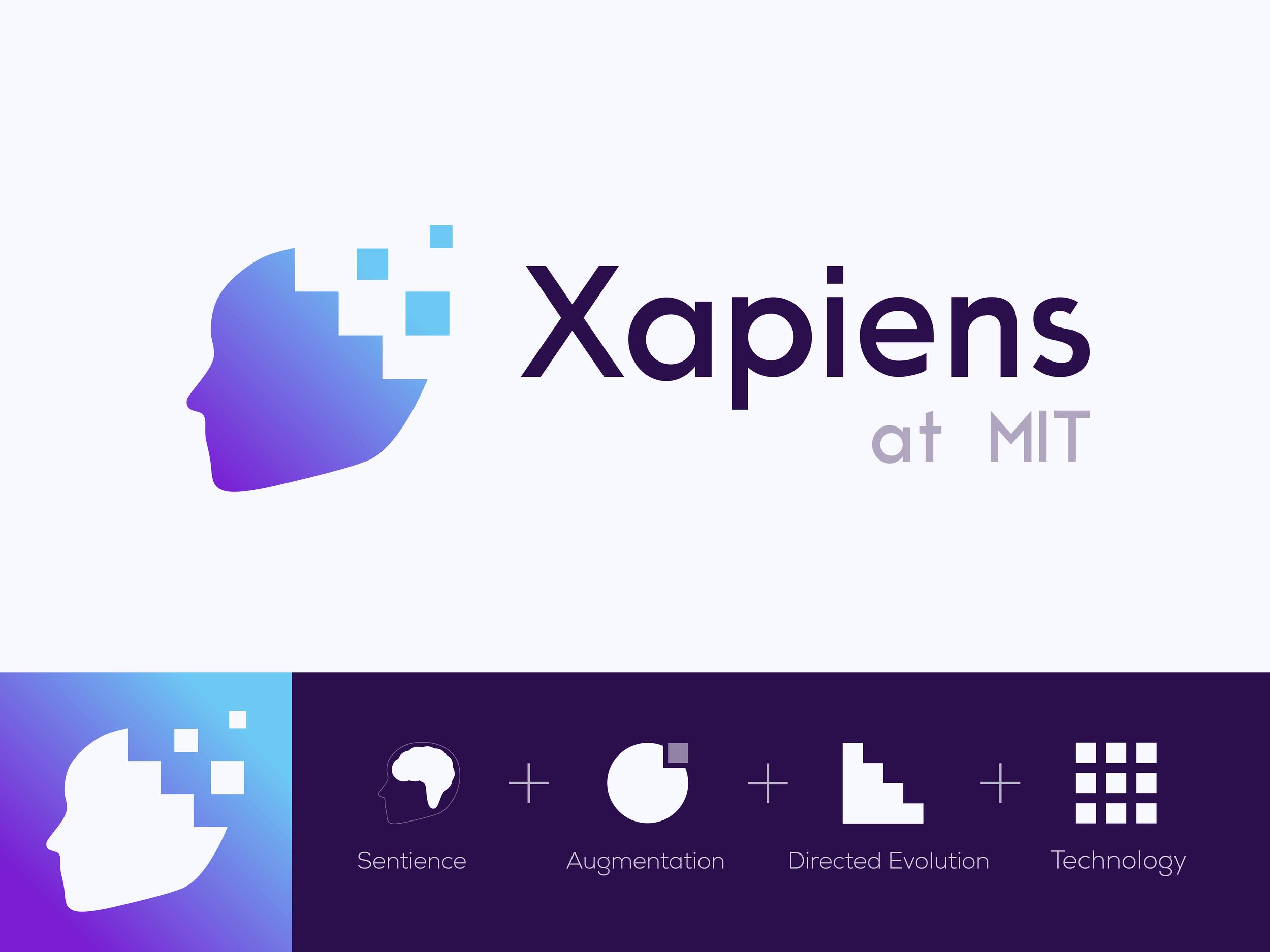 Logo concept visual explanation.  Designed by Siranush Babakhanova.