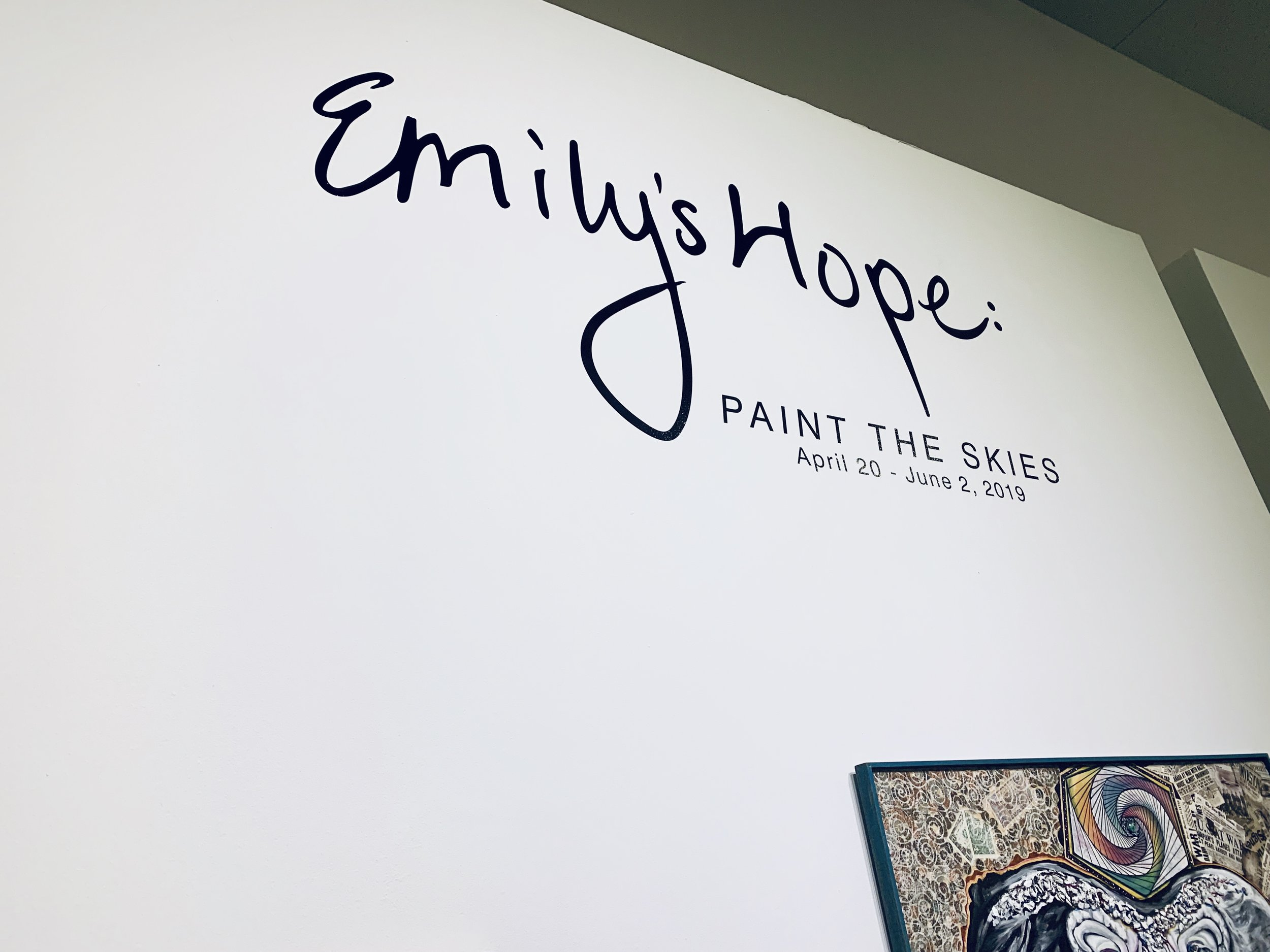 Emily's Hope: Paint the Skies