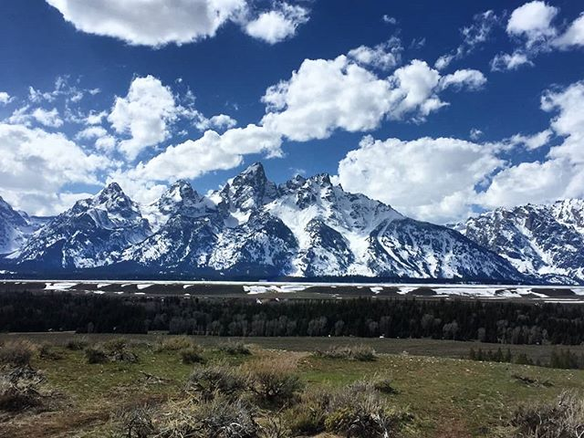 Spring in the Tetons! Patiently awaiting summer and sunshine.