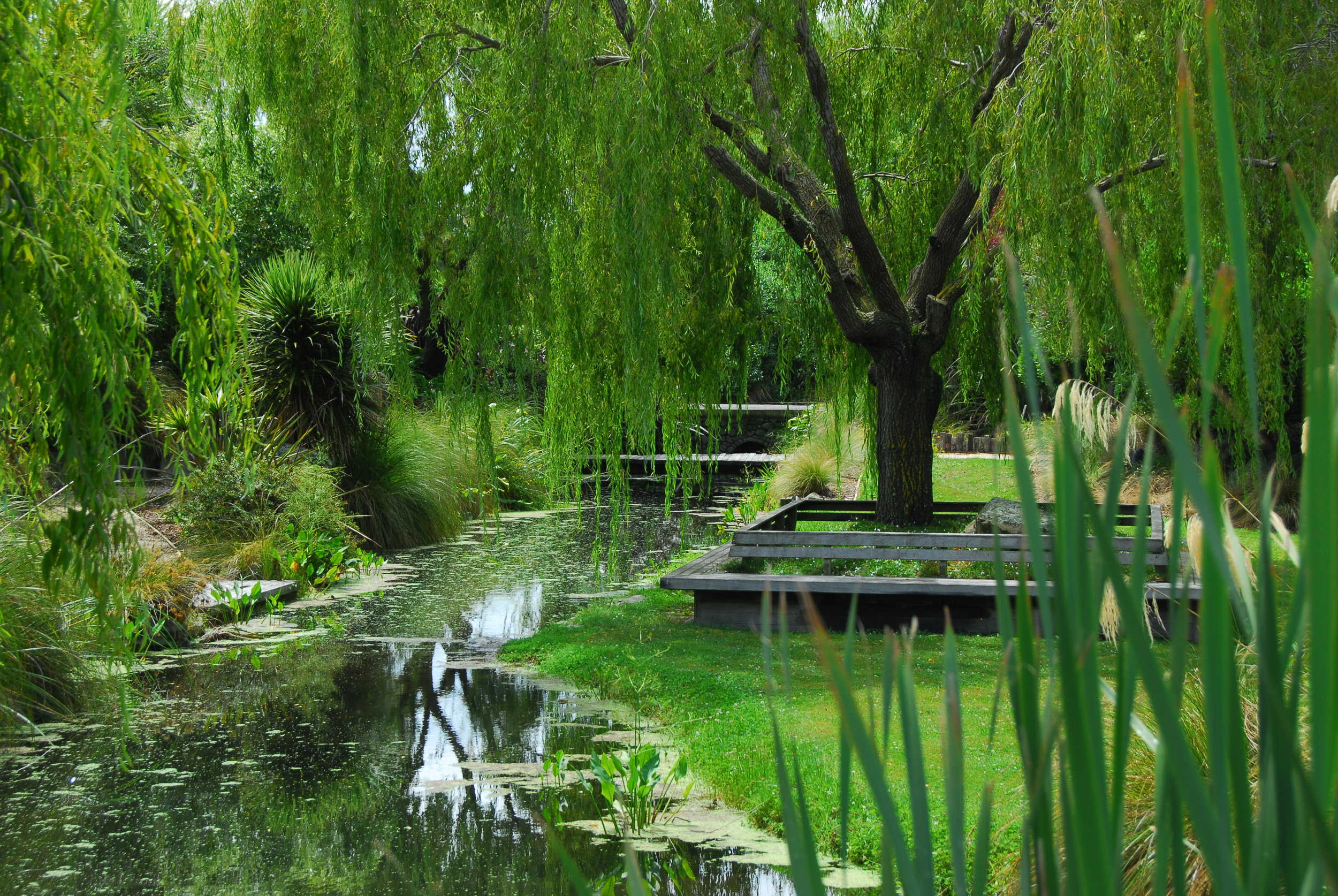 GARDENS - We've selected from the best privately owned and designed gardens in the South Island of New Zealand.