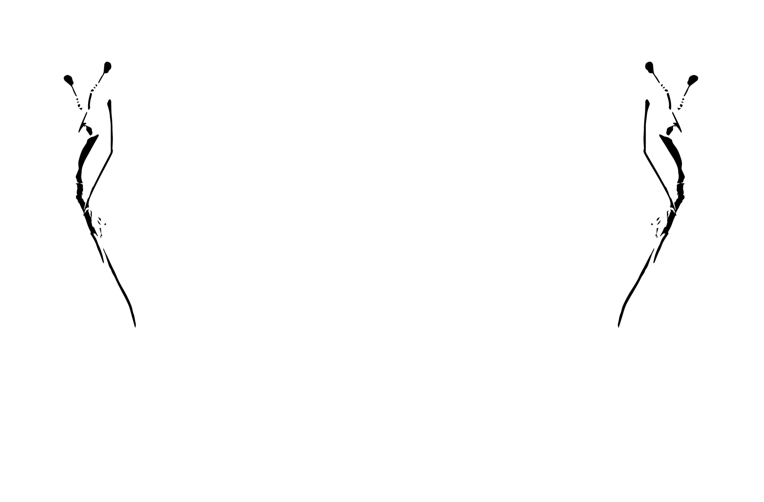 NFF_18_Official_Selection_WHITE.png