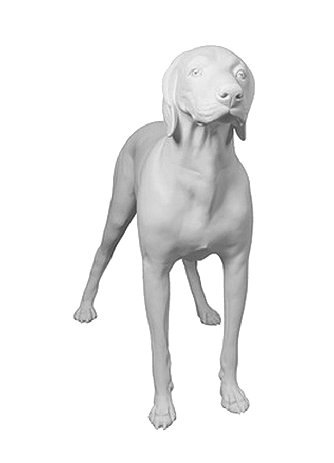 "GERMAN SHORT HAIRED POINTER POS.1   Height 32 ¼  Width 41 ¾""  Length 16 ½"""