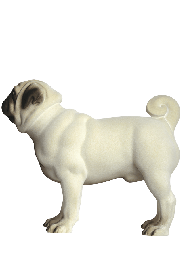 "PUG - MARTY POS21 Realistic Flocked Finish   ht 15 ¼""  Width 9 ¾""  Length 13 ¼"""