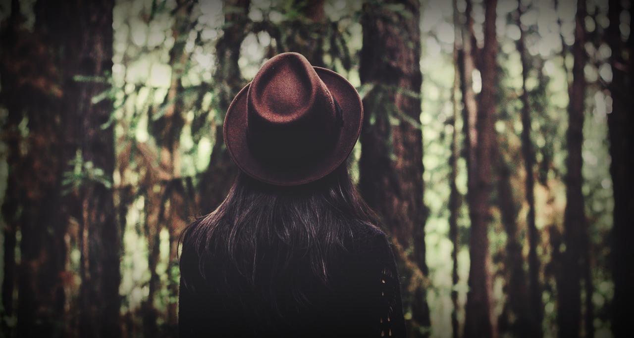 forest-1834831_1280.jpg