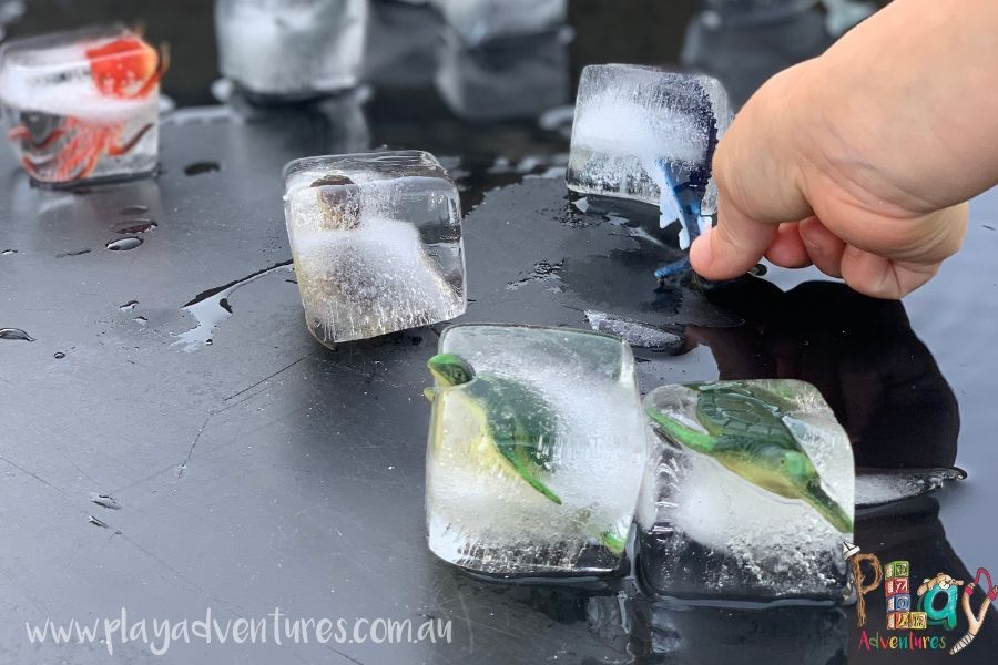 Playing with Ice Cube Animals.jpg