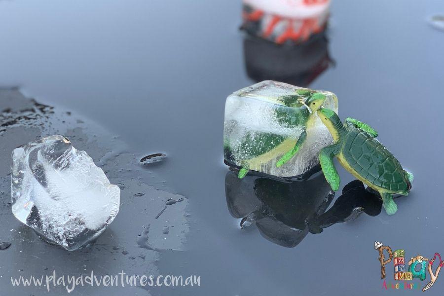 Animal Figurines in Ice Cubes.jpg