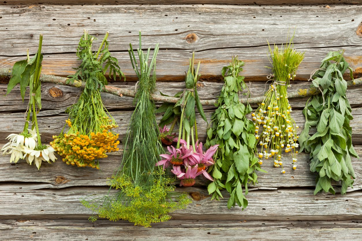 dried-herbs.jpg