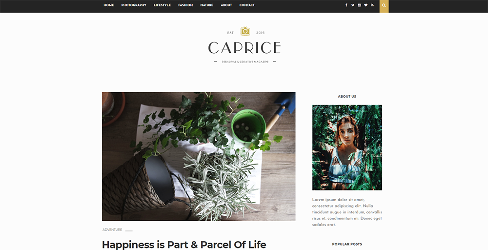 Sixty Eight Ave - Caprice Blogger theme