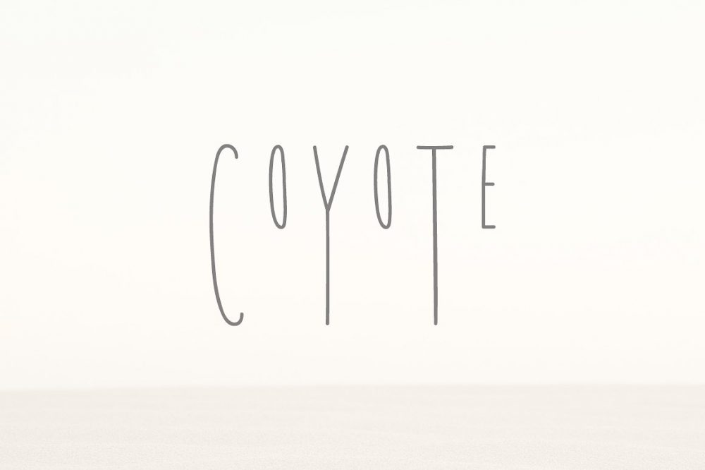 Sixty Eight Ave - 100 Stylish Fonts - Coyote