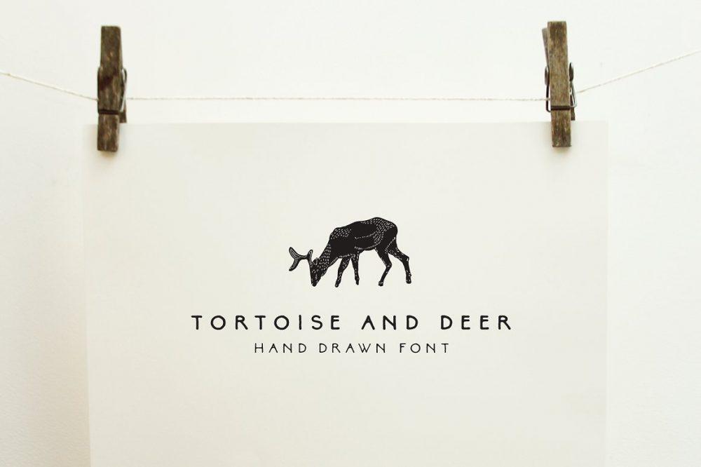 tortoiseanddeer-e1535141584778.jpg