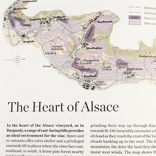 Wine travel prep today! The World Atlas of Wine is out as my trip to @Alsace is edging closer. It's a region I've always wanted to visit. Suggestions of must visit producers are always welcome!