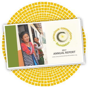 reports_annualreport2017.png