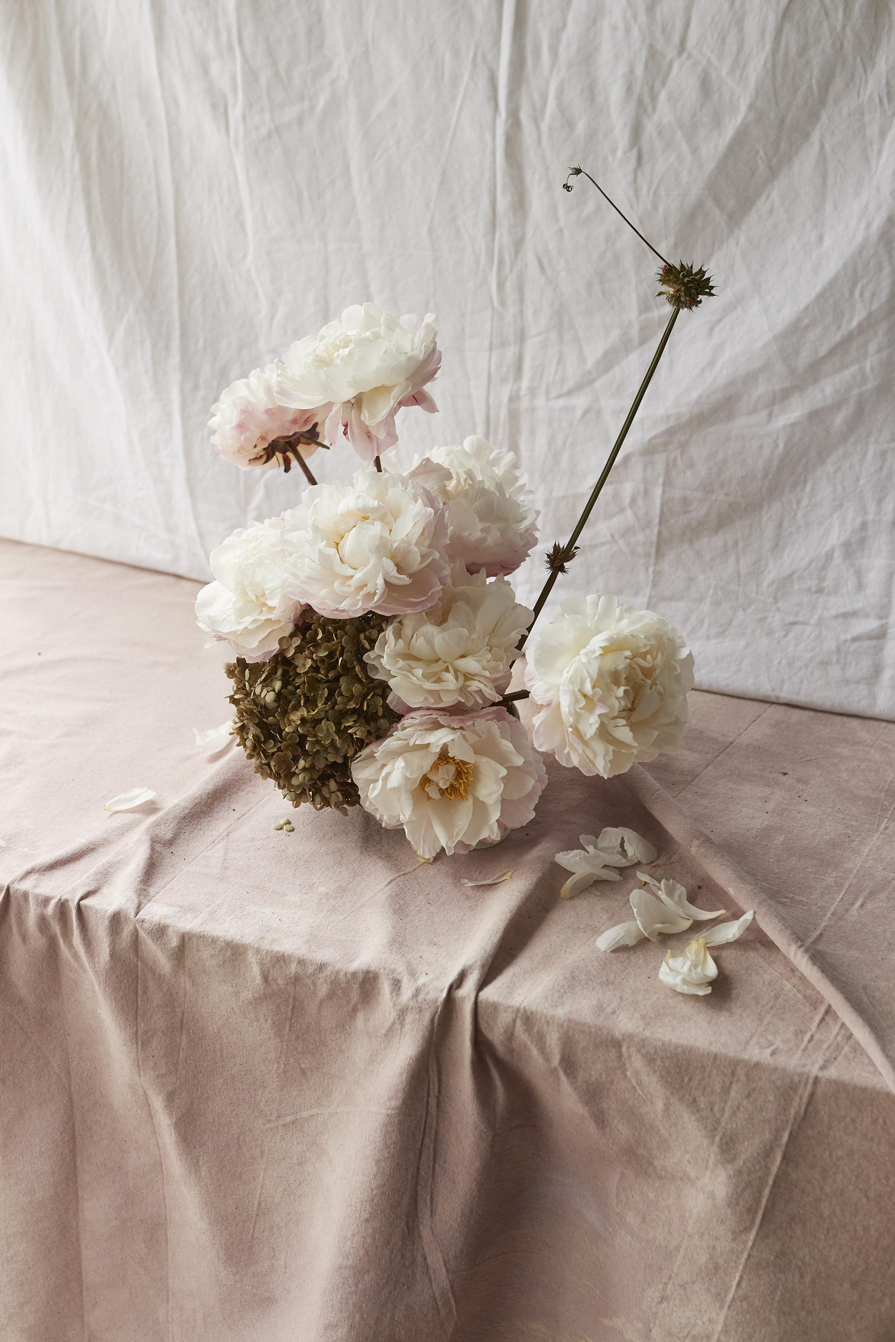 02_170611_FlowerSeekers_102.jpg