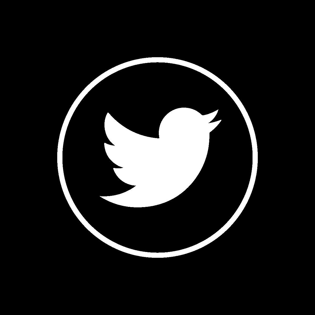 np_social-media-icon_2255036_FFFFFF.png